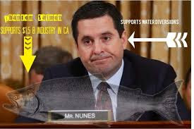 Image result for pictures of devin nunes