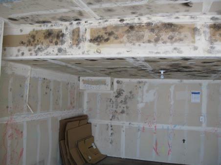 Garage Mold