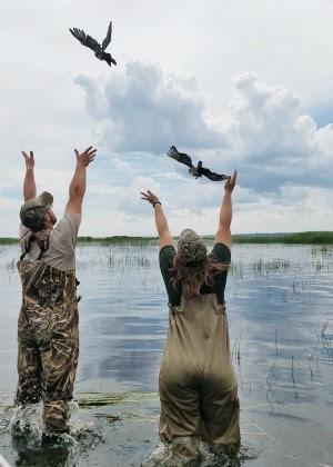 duck release