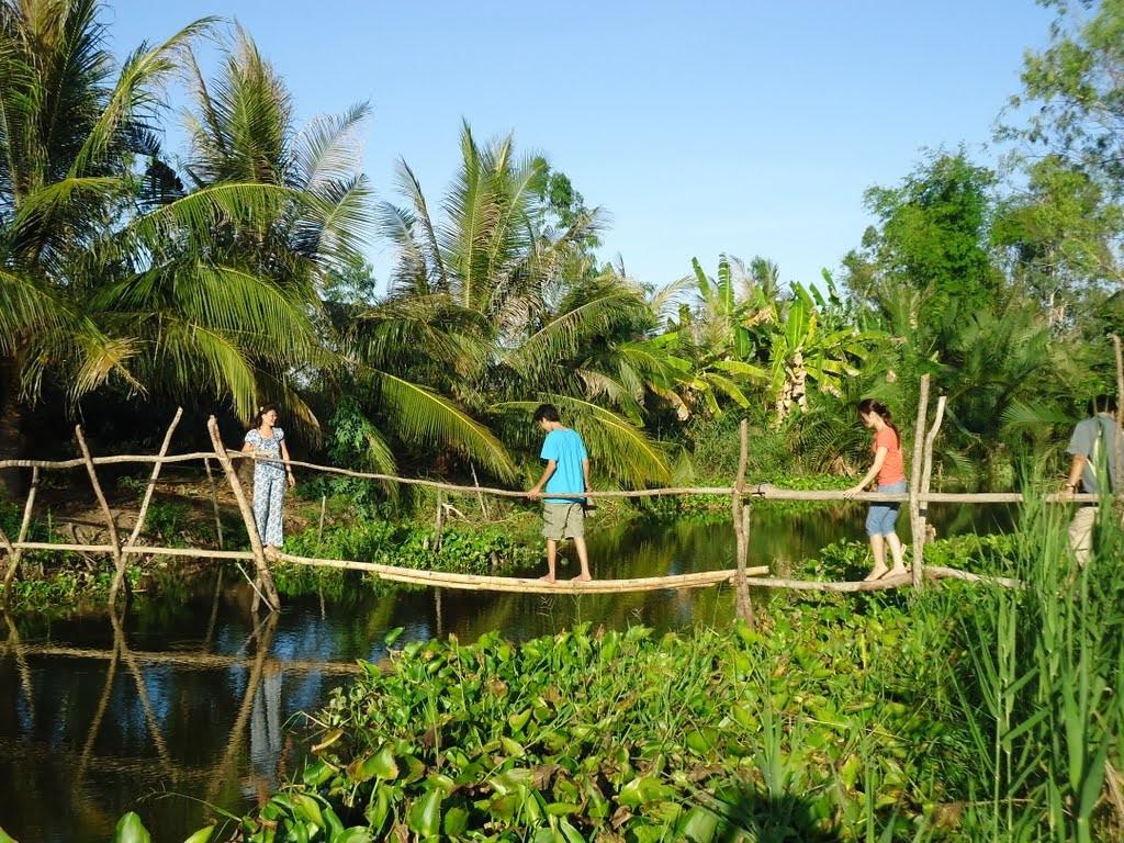Cầu tre qua con rạch. Nguofn: www.panoramio.com