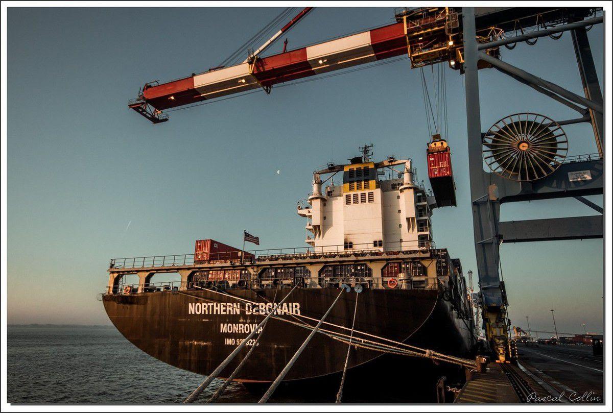 Infos - les Ports, et Infrastuctures maritimes Ob_77fd26_northern-debonair-t9069