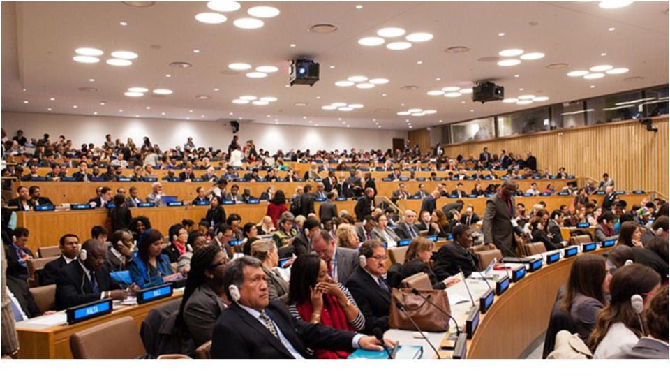 PNG Delegate.jpg