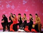 Flamenco en Flash
