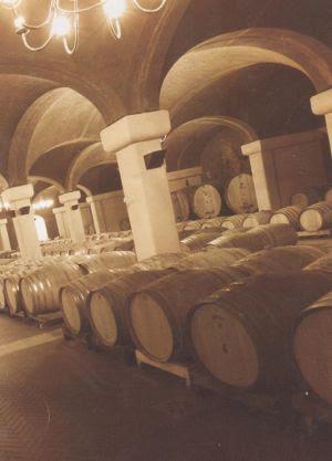 Début: MMV comemora apostando em vinhos finos, sustentáveis e no e-commerce