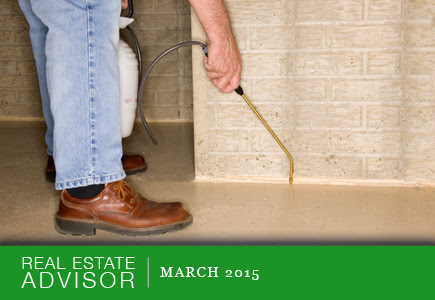 Real Estate Advisor: March 2015