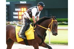 King Guillermo trains at Oaklawn Park ahead of the Arkansas Derby