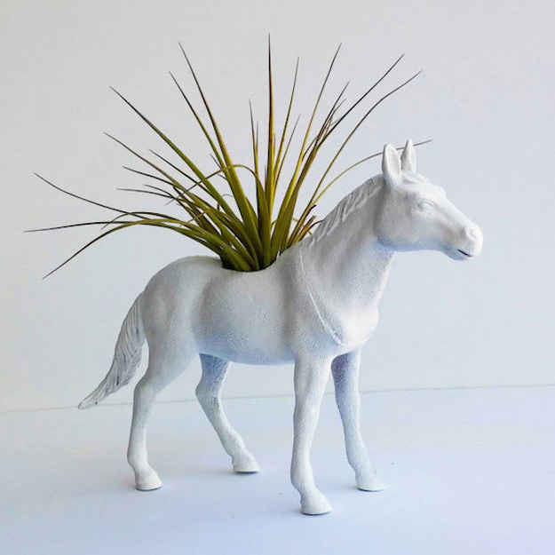 This horse planter that comes with an air plant.