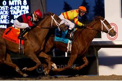 Pumpkin Rumble (inside) edges Melmich in the Valedictory Stakes