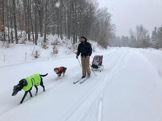 man pulls ski chariot alongside dogs on snowy trail