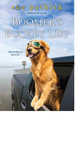 Boomer's Bucket List by Sue Pethick