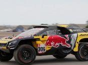 El marcador de Sébastien Loeb relegó al español Nani Roma a la segunda posición del Rally Dakar 2019.