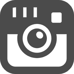 Instagram logo free icon 2