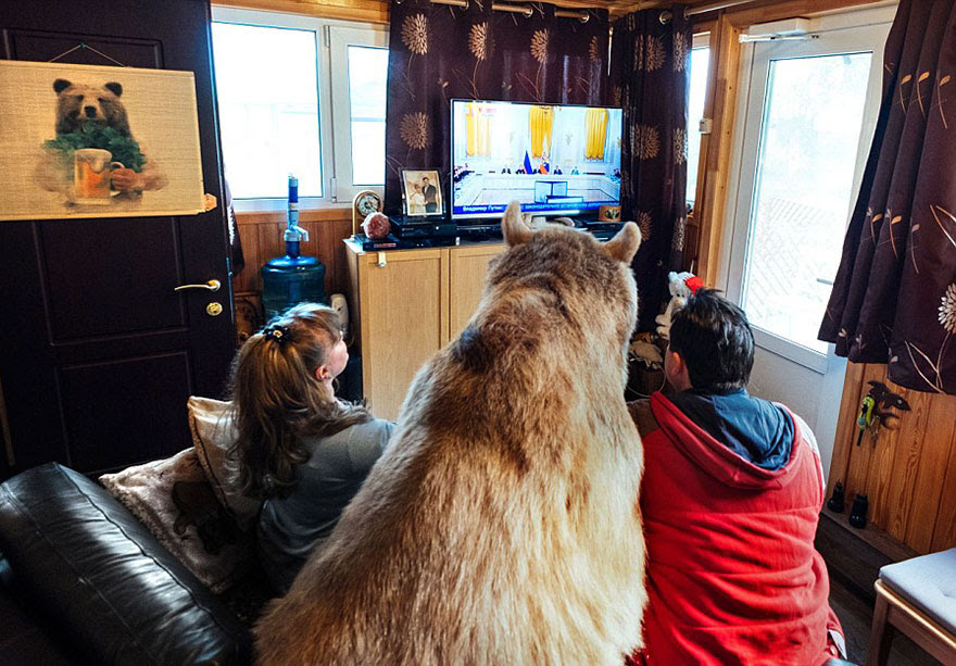 http://www.boredpanda.com/adopted-bear-russian-family-stepan/?image_id=adopted-bear-russian-family-stepan-a18.jpg
