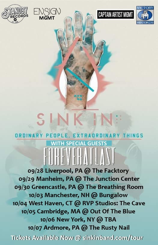 sink in tour poster