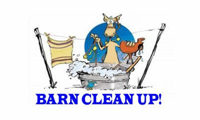 Barn Clean - Phase 2 @ BCCC, Canal Centre
