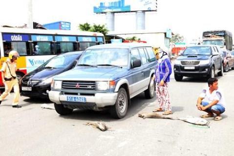 Người dân mang xác cá chết đổ ra quốc lộ, đường đi Vũng Tàu tắc nghẽn - ảnh 9