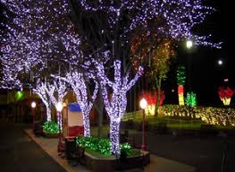 Image result for river of lights