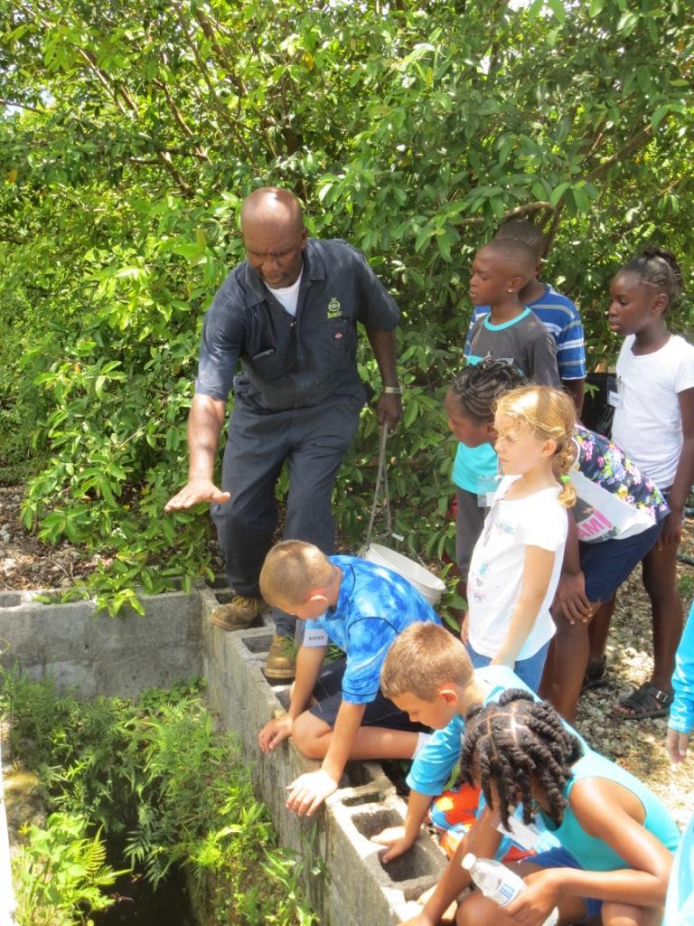 Summer camp, organic farm, fresh water well