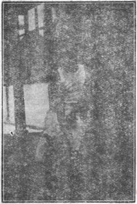 """""""八極拳"""" 繆 淦 傑 (1936) - foto 1.7"""