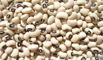 Perú exportó frijol castilla por US$ 9.4 millones en el primer semestre de 2021