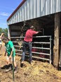 Maine students working on local farm
