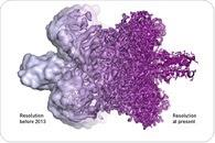 Cool Microscope Technology Revolutionises Biochemistry