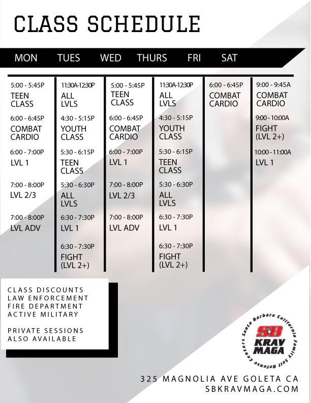 Click to go to the Santa Barbara Krav Maga schedule page