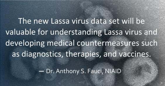 Dr. Fauci pull quote on Lassa virus