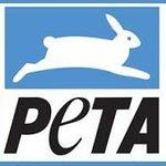 PETA: Profile