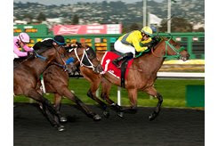 Tribal Storm sprints to the lead in the Lost in the Fog Stakes at Golden Gate