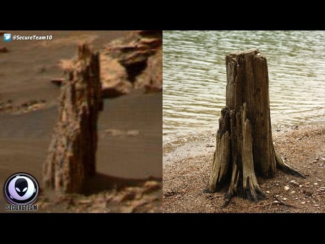 ANCIENT Tree Stump Found On Mars? Sddefault