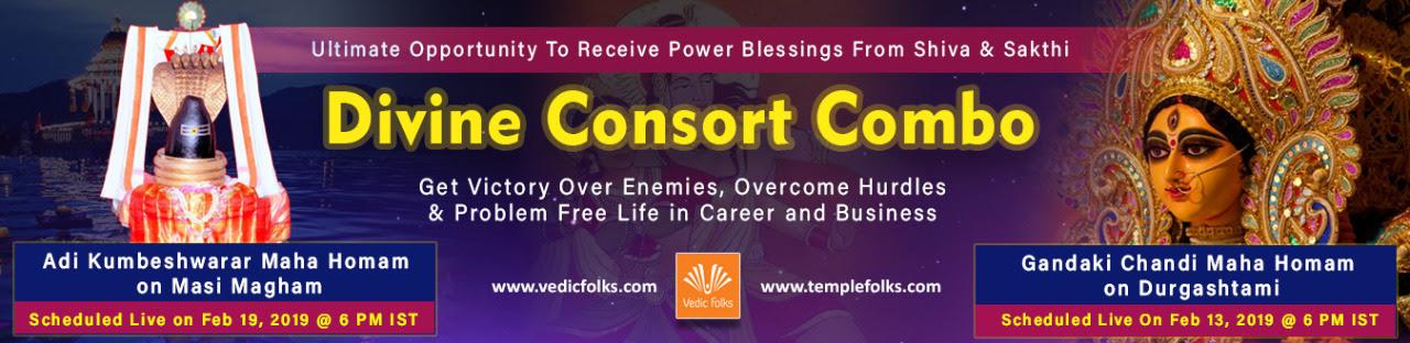 Divine Consort Combo