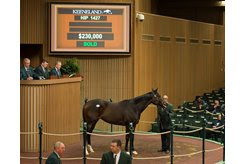 Classy Tune brings $230,000 to top the final Keeneland January session