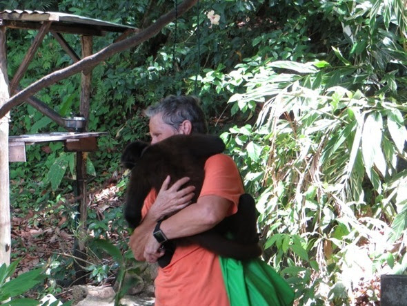 GUAPO-HUGS