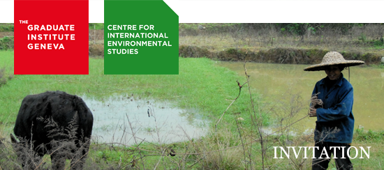 Centre for International Environmental Studies
