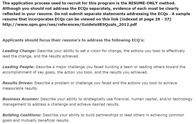 five page resume format for two current ses candidate