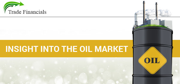 Insight into the oil market