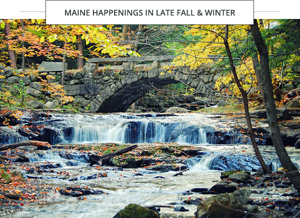 Maine Happenings in Late Fall & Winter foliage, stream and stone bridge