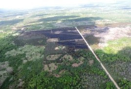 An aerial scene from the Colfax Fire in Wexford County showing a column of smoke and burned earth surrounded by roads and grass.