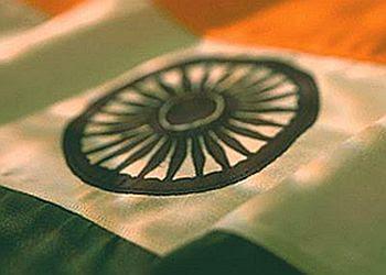 Indian Flag -1