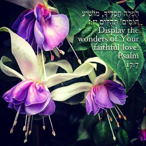 Word pic Psalm 17 7