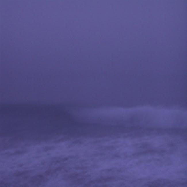 wave 3113