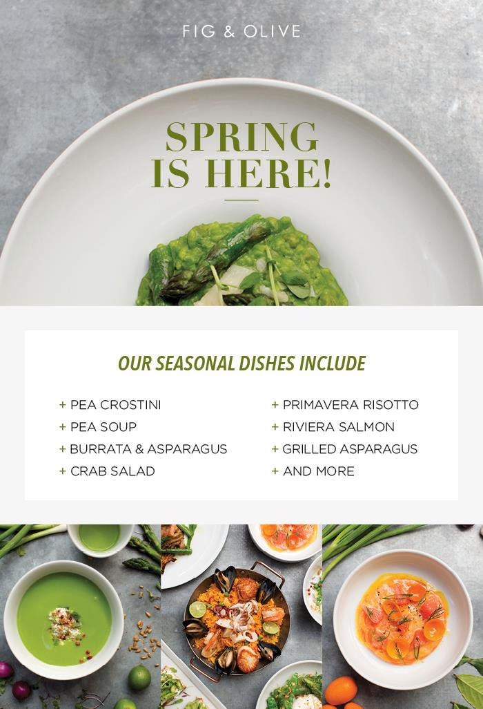 http://media.emailcampaigns.net/media/50/509120/SPRING_MENU_R3(VENGA).jpg