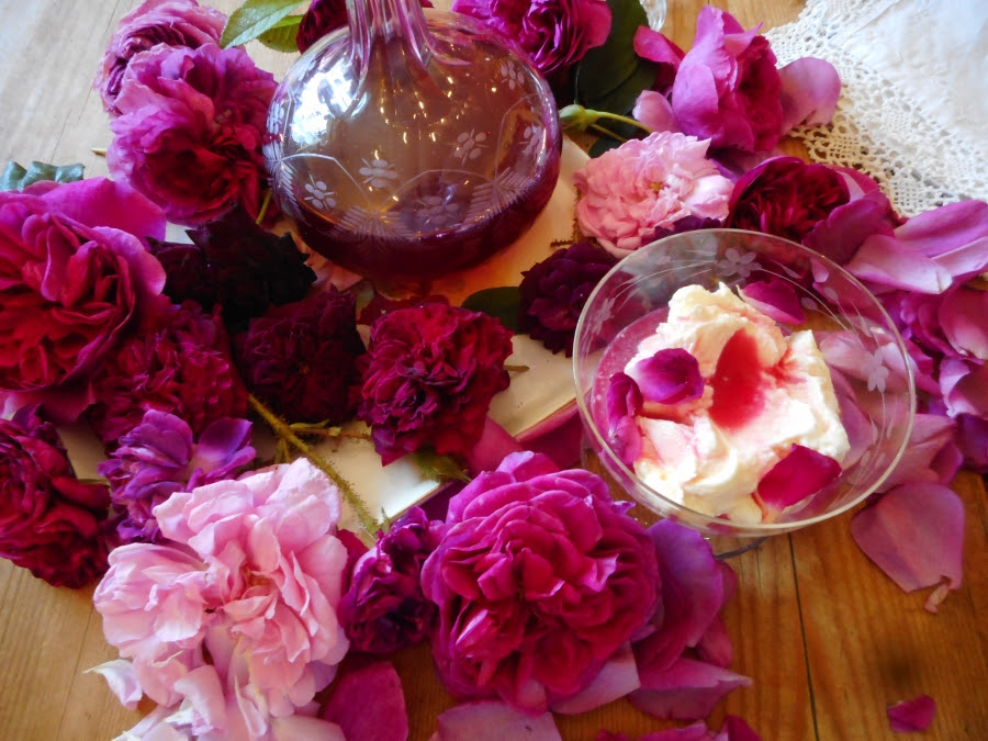 Roses surrounding rose petal syrup with kefir ice cream