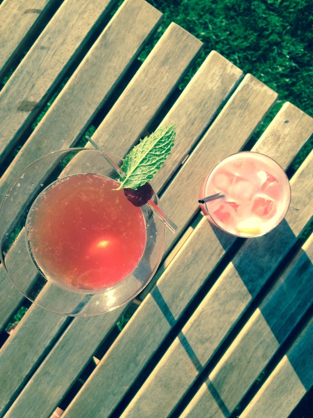 Pimms Martini and Rhubarb Sour