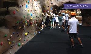 Adventure Zone Experience