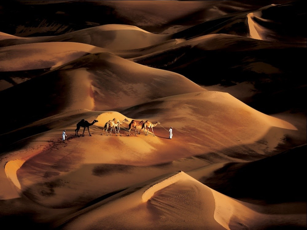 Best pictures of the year f-rom National Geographic