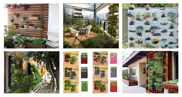 Space-Saving Vertical Gardens