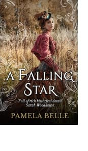 A Falling Star by Pamela Belle