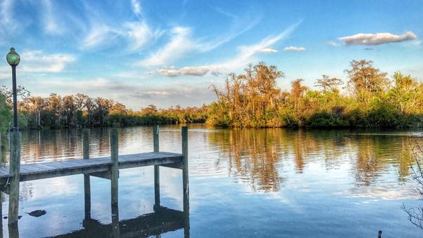 Beautiful Peace River at Riverside RV Resort in Florida